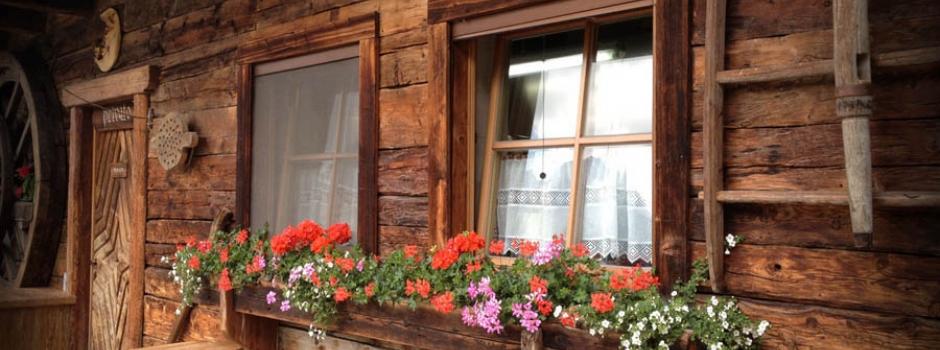 Zanzariera verticale a molla per finestra bettio sonia - Zanzariera finestra prezzo ...