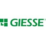 Giesse