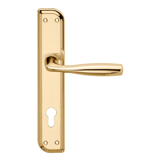 Philip Serie Basic Forme Maniglia Per Porta Su Placca Irregolare Frosi